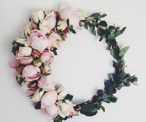 beautiful, cute, and flower image