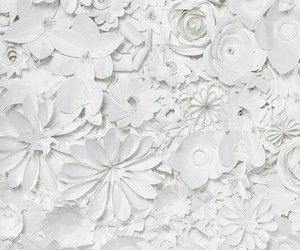 flowers, white, and Paper image