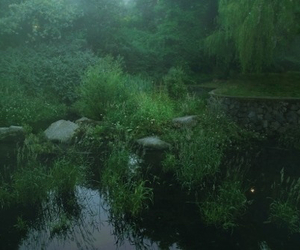 nature, green, and grunge image