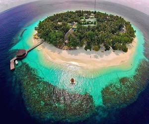 Island, beach, and paradise image