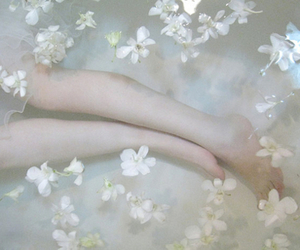 flowers, pale, and water image