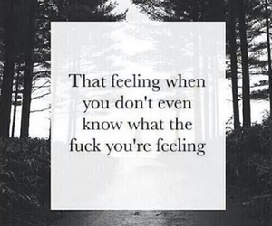 feelings, shit, and i don't know image