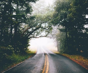 forest, vintage, and cool image