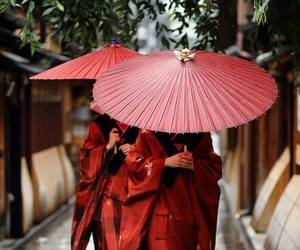 red, umbrella, and japan image
