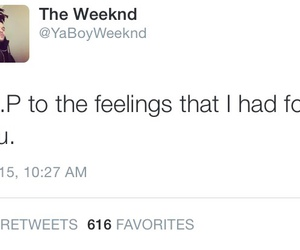 twitter, the weeknd, and tumblr image
