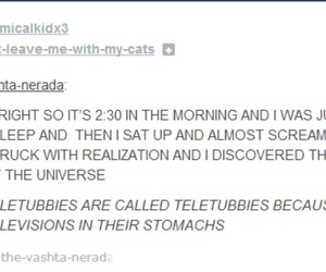 funny, tumblr, and teletubbies image
