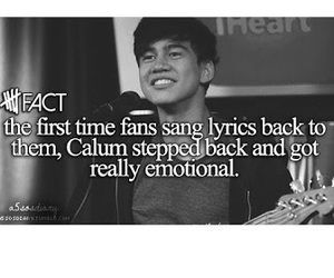 fact, 5 seconds of summer, and 5sos image