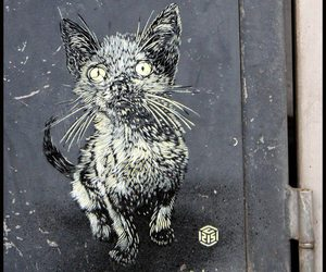 cat and trotou'art image
