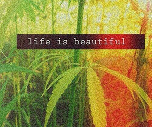 life, weed, and beautiful image