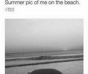 beach, summer, and funny image