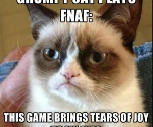 funny, lol, and video game image