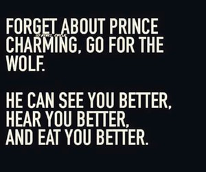 wolf, prince charming, and quotes image