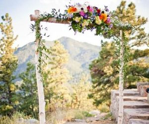 beautiful, flowers, and gate image