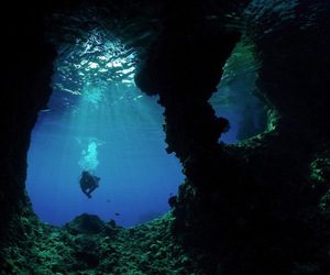 amazing, dive, and diving image
