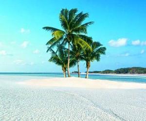 beach, beautiful, and classy image