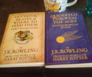 beasts, fantastic, and harry potter image