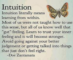 intuition, gut feeling, and better judgement image