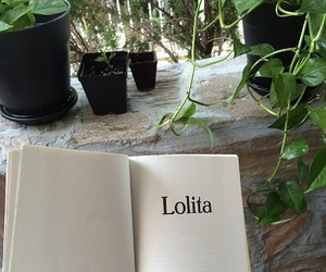 aesthetic, plants, and book image