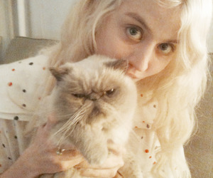 cat, allison harvard, and girl image