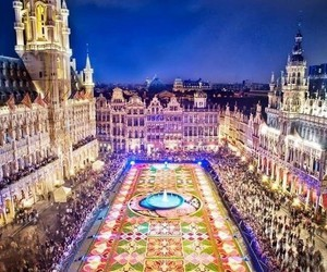 brussels, flowers, and belgium image