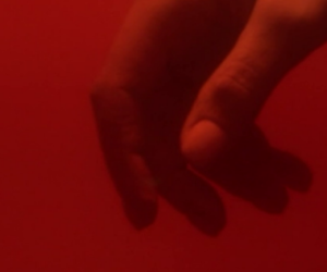 blood, red, and hand image