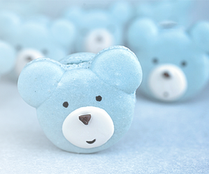 blue, bear, and cute image