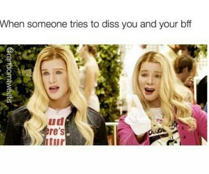 funny, white chicks, and friends image