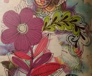 butterfly, floral, and flower image