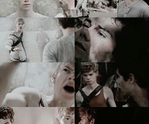 fandom, thomas sangster, and maze image