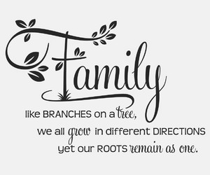 branches, family, and family tree image