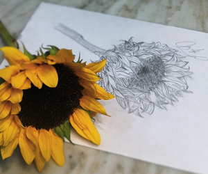 art, bohemian, and bouquet image