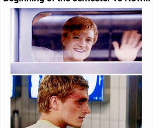 funny, school, and hunger games image