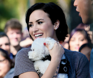 demi lovato, dog, and demi image