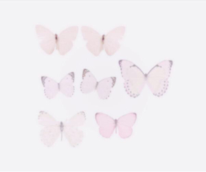 background, butterflies, and header image