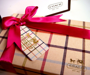 coach, gift, and pink image