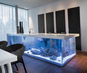 kitchen, aquarium, and home image