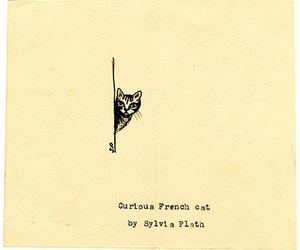 sylvia plath, cat, and drawing image