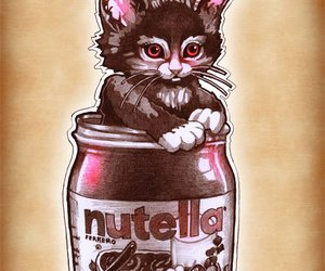 nutella, kitten, and cat image