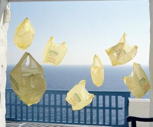 sea and yellow image
