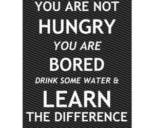 hungry, bored, and learn image