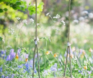 flowers, swing, and nature image