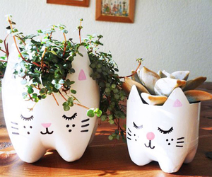cat, plants, and diy image