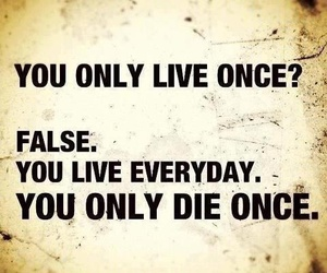 quotes, yolo, and life image