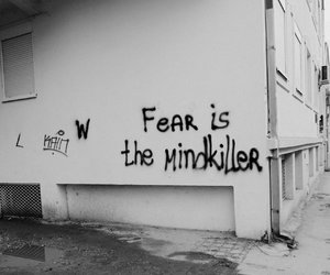 black and white, fear, and graffiti image