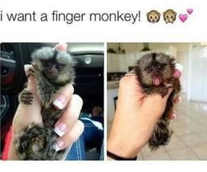 nail, want, and cute image