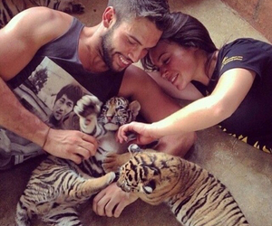 love, couple, and tiger image