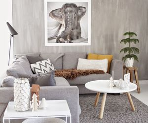 cosy and decor image