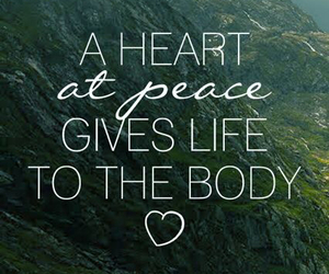 life, love, and peace image