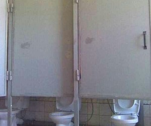 funny, lol, and toilet image