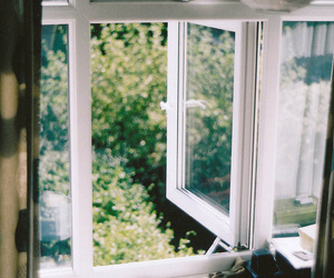 window, nature, and green image